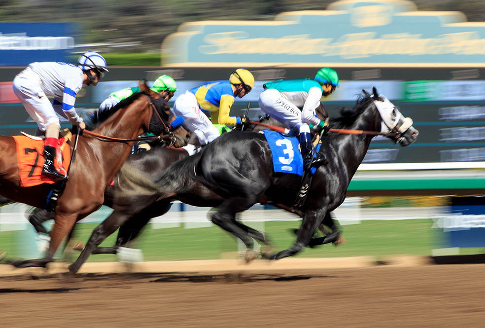 Four jockeys and their horse racing at the Santa Anita race track.